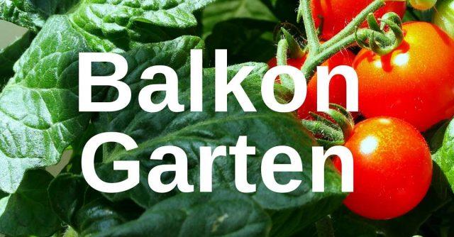 Innenarchitektur linz ries prodesignoutdoor archives for Gartengestaltung 1000 m2